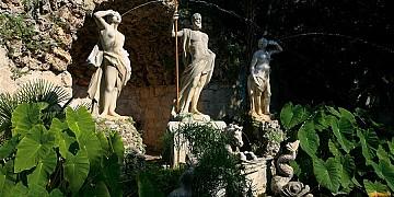 arboretum-trsteno.jpg